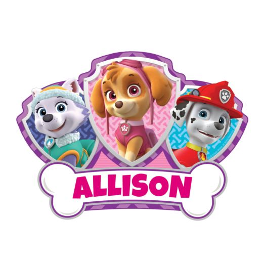 PAW Patrol Skye and Pups Easy-Move Canvas Decal